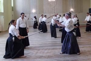 aikido chrzanow stickles