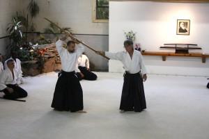aikido chrzanow stickles burnos